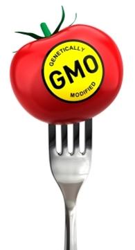 генно модифицирани организми